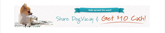 DogVacay Promotional Sharing Banner
